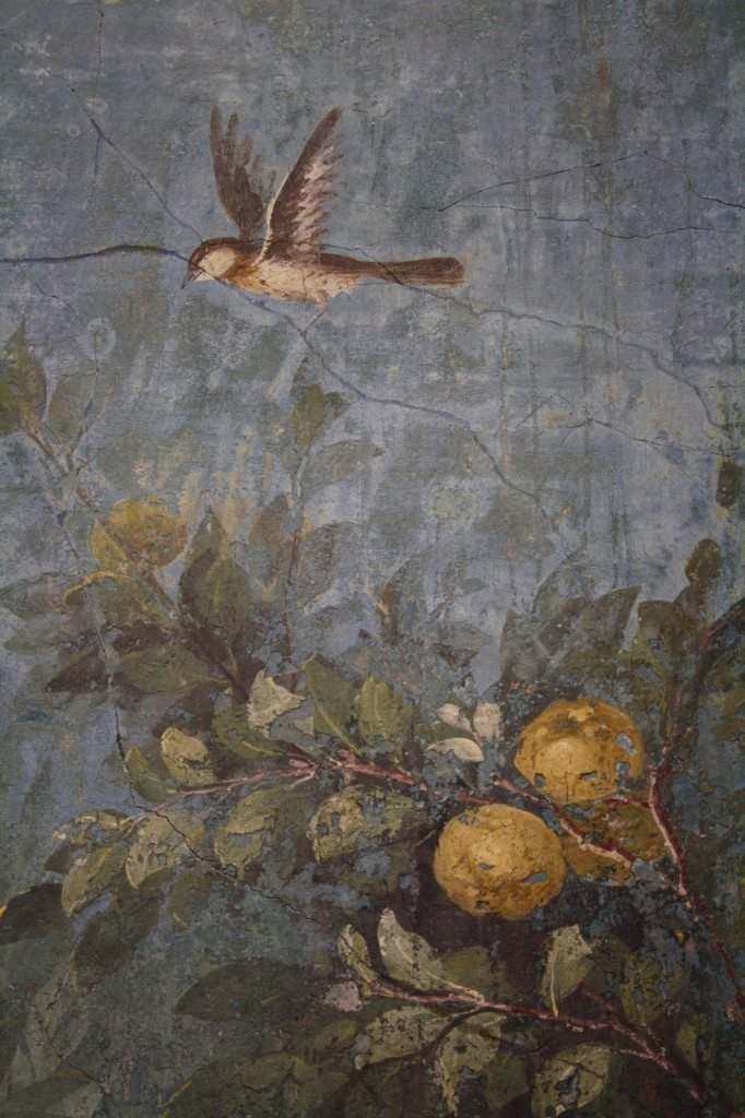A detail of the garden fresco from the winter triclinium (dining room) from the Villa of Livia, wife of Augustus, Rome. The life-size representations of trees, flowers, fruit and birds decorate all four walls of the room to create a continuous and 360° view of a garden which adds perspective by increasing clarity in the foreground subjects. (Palazzo Massimo, Rome).