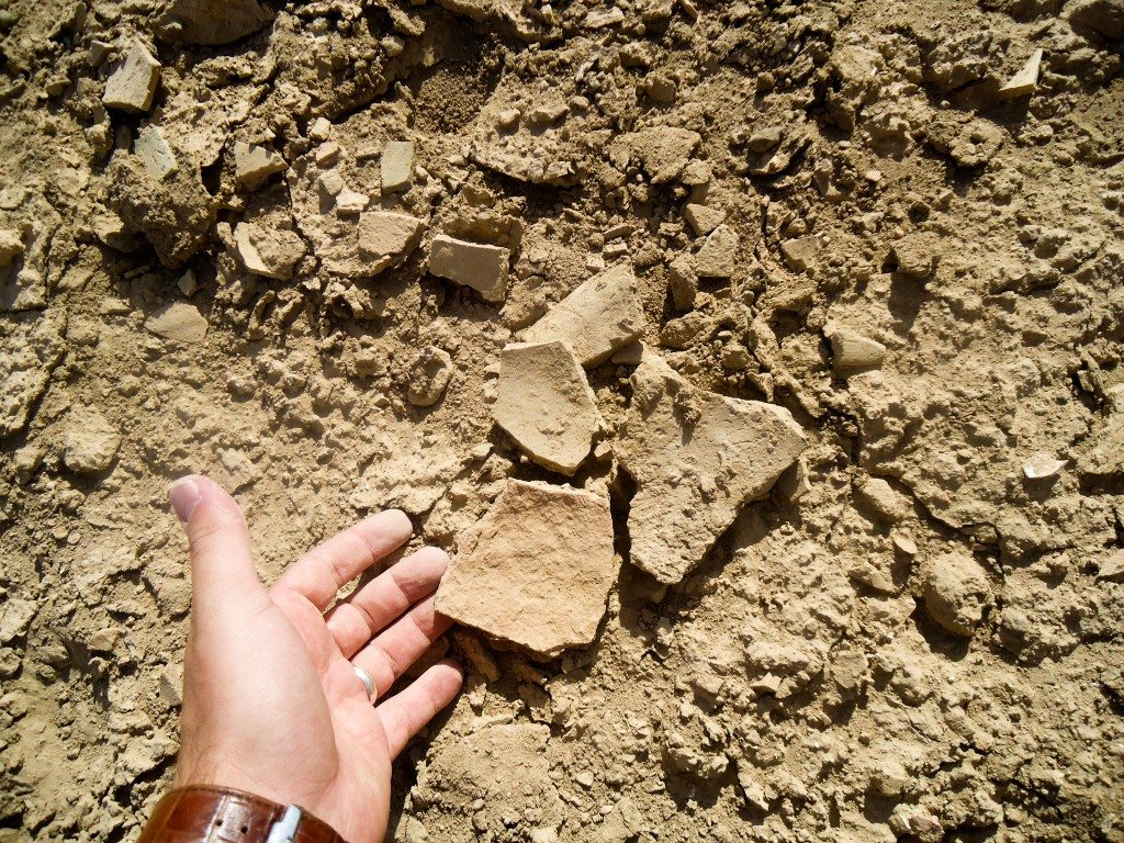Fragments of a pottery. Illegal excavation by looters!