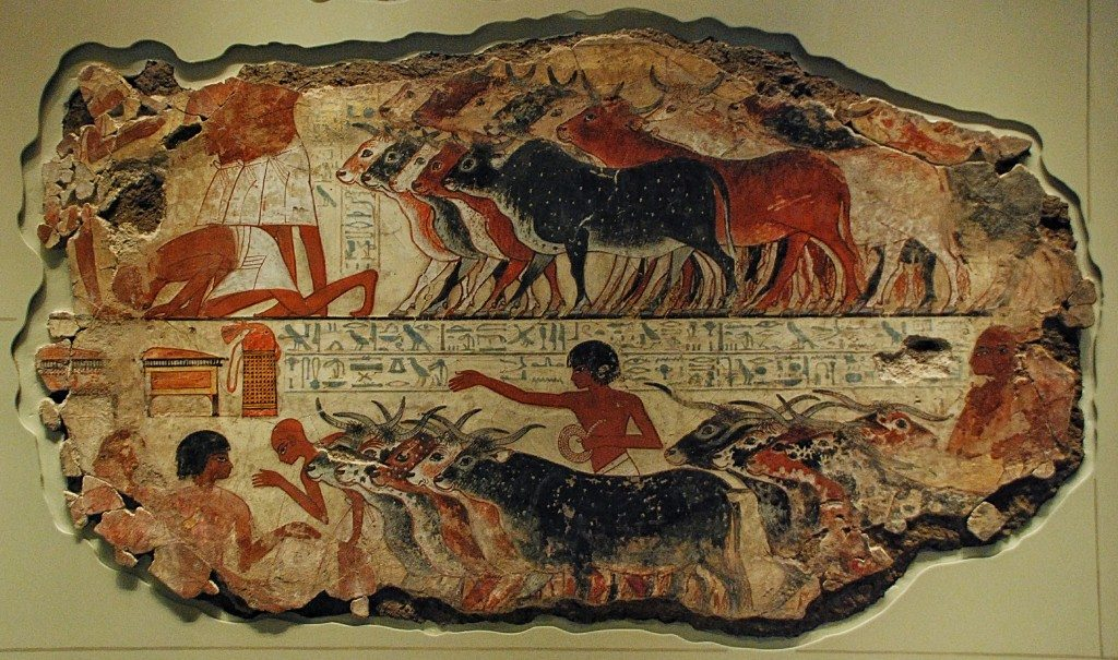 Nebamun is inspecting cattle and geese. Farmers bring their animals to him and his scribes record their number.