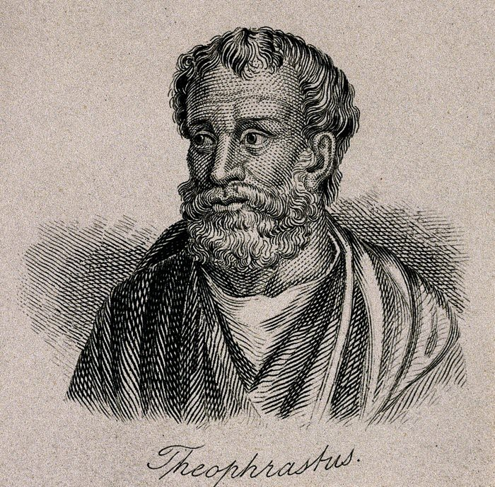 Theophrastus first botanist in the written history