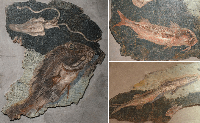 Mosaic with maritime scenes, from the Via Panisperna in Rome, late 2nd - early Ist century BC, it once decorated the pool of a Roman bath, Centrale Montemartini, Rome museum. Photo © Carole Raddato.