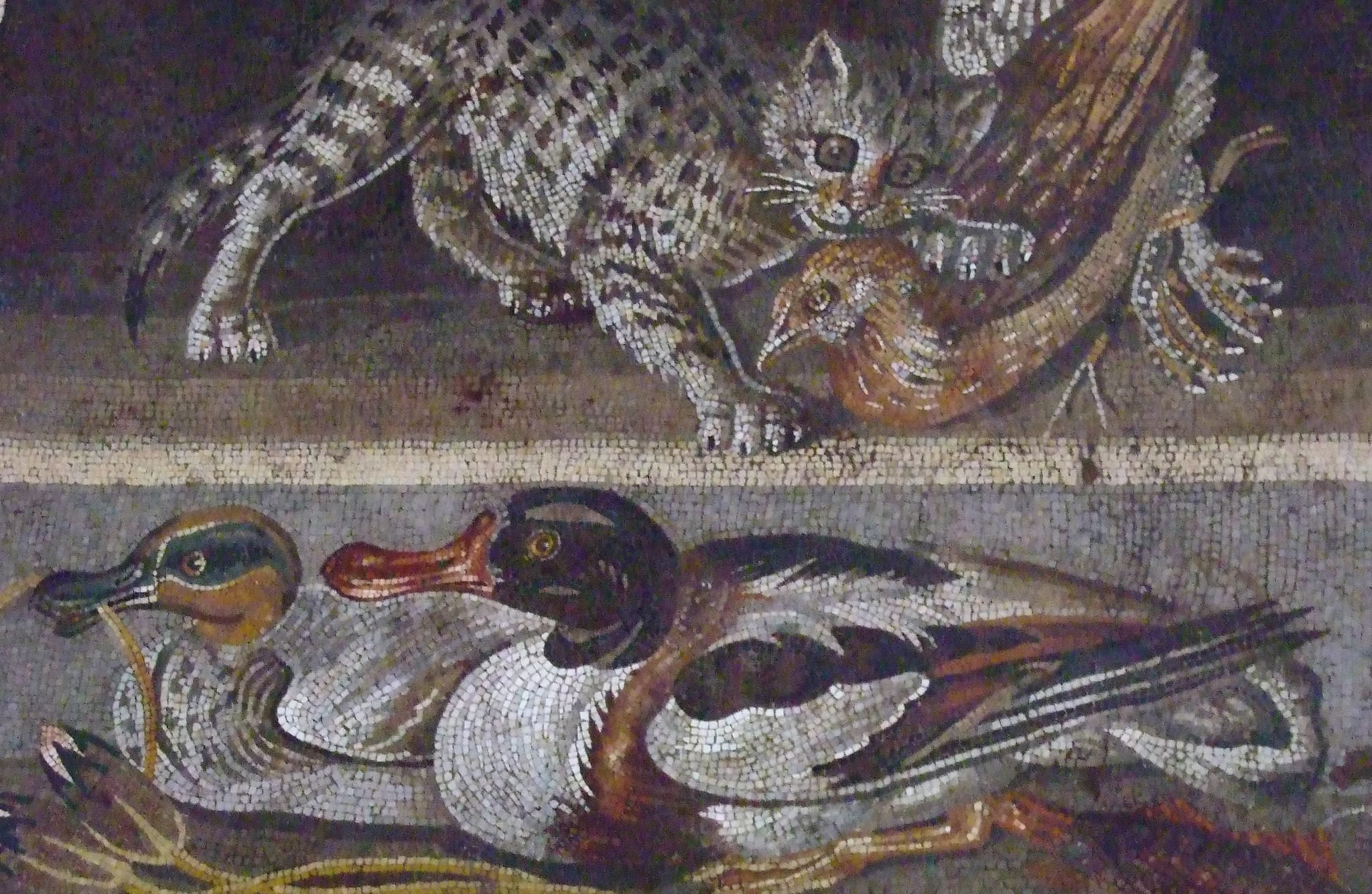 mosaics in pompeii See ancient graeco-roman artefacts from pompeii and herculaneum and the  toro farnese (farnese bull) sculpture, mosaics and more.