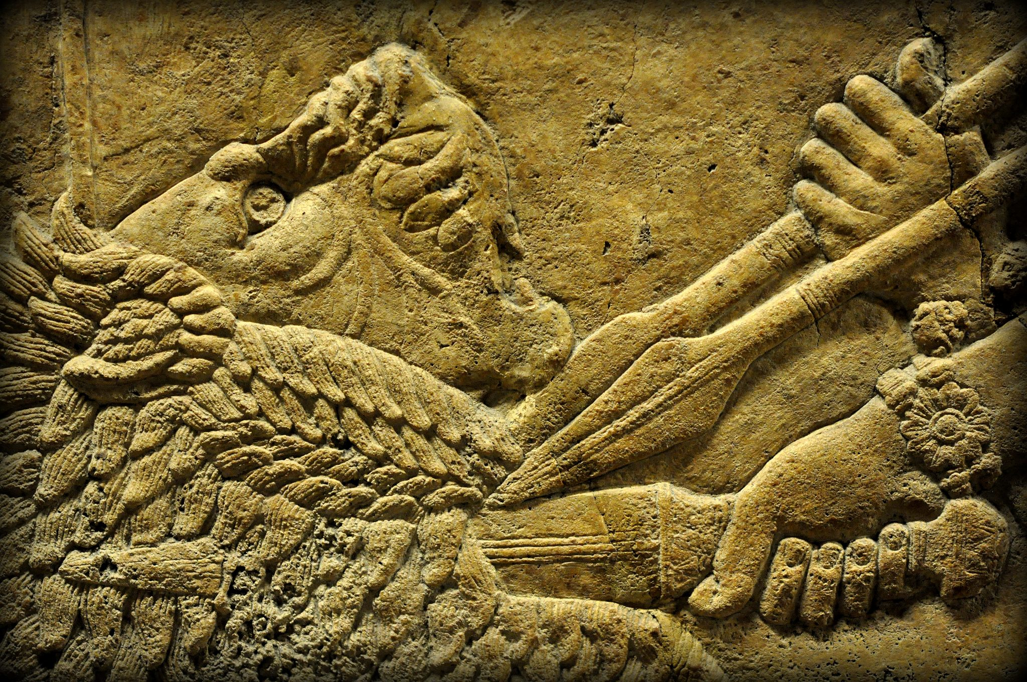 Detail of an alabaster bas-relief showing a lion being stabbed in the neck. The lion has jumped and reached a critical point very close to the king's chariot. The king's attendants thrust their spears onto the lion's neck to stop the lion; the king, using his right hand, stabs the lion deeply into his neck. The lion's painful facial expression was  depicted very delicately. From Room C of the North Palace, Nineveh (modern-day Kouyunjik, Mosul Governorate), Mesopotamia, Iraq. Circa 645-535 BCE. The British Museum, London. Photo©Osama S.M. Amin.