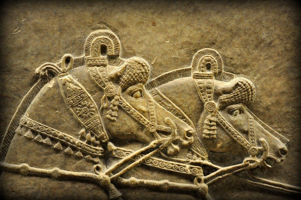 Detail of an alabaster bas-relief showing Ashurbanipal's horses. This is part of the above image. Note how beautiful and elegant they are! From Room S of the North Palace, Nineveh (modern-day Kouyunjik, Mosul Governorate), Mesopotamia, Iraq. Circa 645-535 BCE. The British Museum, London. Photo©Osama S.M. Amin.