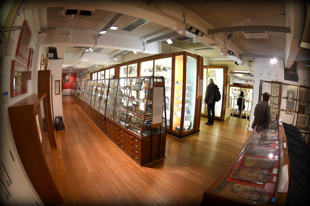 One of the rooms/galleries of the Petrie Museum. At the right, there is a stair which descends you to another room/gallery. Photo © Osama S. M. Amin.
