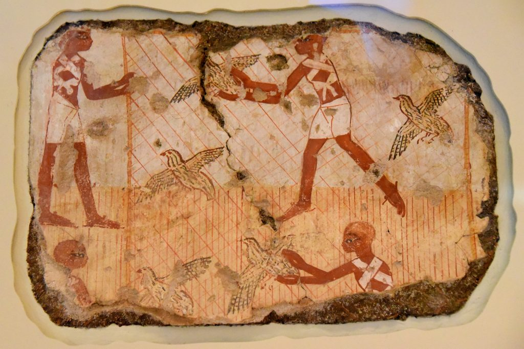 This fragment on load from Berlin shows men in a filed catching quails ina net. It is thought that Nebamun's tomb-chapel lies at Dra Abu el-Naga becasue this fragment was found there in 1890. Photo © Osama S. M. Amin.