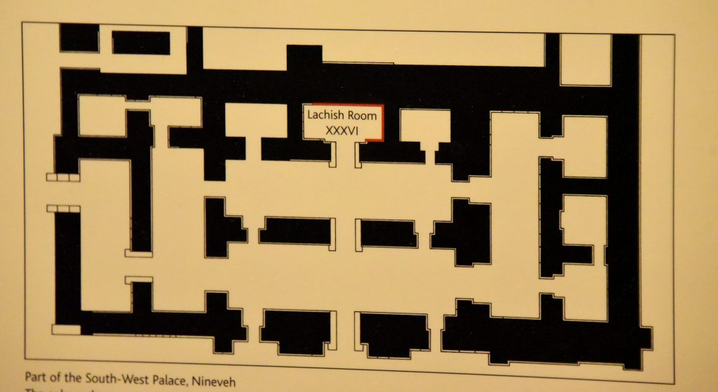 Plan of the South-West Palace of Sennacherib at Nineveh. Room XXXVI was labelled with red lines to show the original alighnment of the these wall releifs housed in the British Museum. The sketch/drawing belongs to the British Museum. This photo is shot by and is © Osama S. M. Amin.