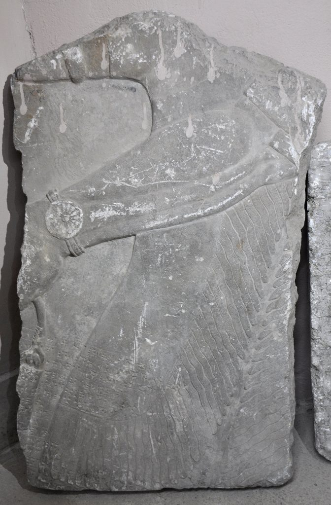 Fragment of a gypsum wall relief from the North-West Palace of Ashurnasirpal II. What has survived is part of a torso of an Apkallu. There is a bracelet on his left wrist. his hand holds a bucket (extreme left). Note the musculature of the forearm. Not on display. Exclusive photo; never-before-published. The Sulaymaniyah Museum, Iraqi Kurdistan. Photo © Osama S. M. Amin.