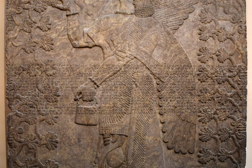 This large wall relief summarizes what we have seen in the aforementioned reliefs in the Sulaymaniayh Museum. An eagle-headed and winged man (Apkallu, Sage, or protectvie spirit) stands in the middle of the panel and is flanked by 2 sacred trees. He wears a long fringed and equisityl carved robe. There are bracelets and armlets. The anatomy of the muscles of the arms and legs are highlighted, conveying the message that he is a powerful creature. His left hand holds a bucket while the right one holds a cone. This is part of a ceremonial religious rite. From the North-West Palace at Nimrud, Room F, panel 8. Northern Mesopotamia, modern-day Iraq. Assyrian, 865-860 BCE. The British Museum, London. Photo © Osama S. M. Amin.