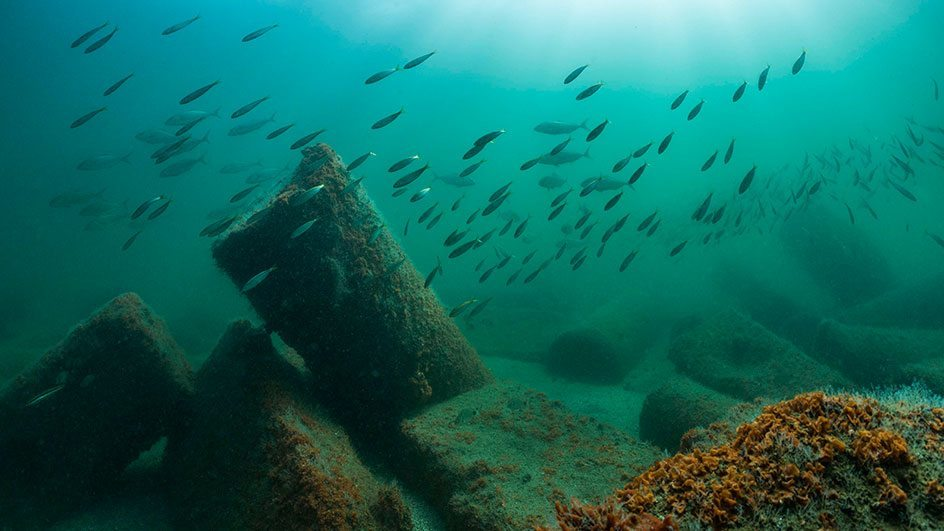 The ruins of Canopus were discovered in Aboukir Bay, 2km east of the western fringe of the Nile Delta. Photo by Christoph Gerigk; © Franck Goddio/Hilti Foundation. Sunken Cities exhibition.